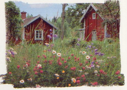 http://m.lovethispic.com/uploaded_images/113498-Wildflowers.jpg