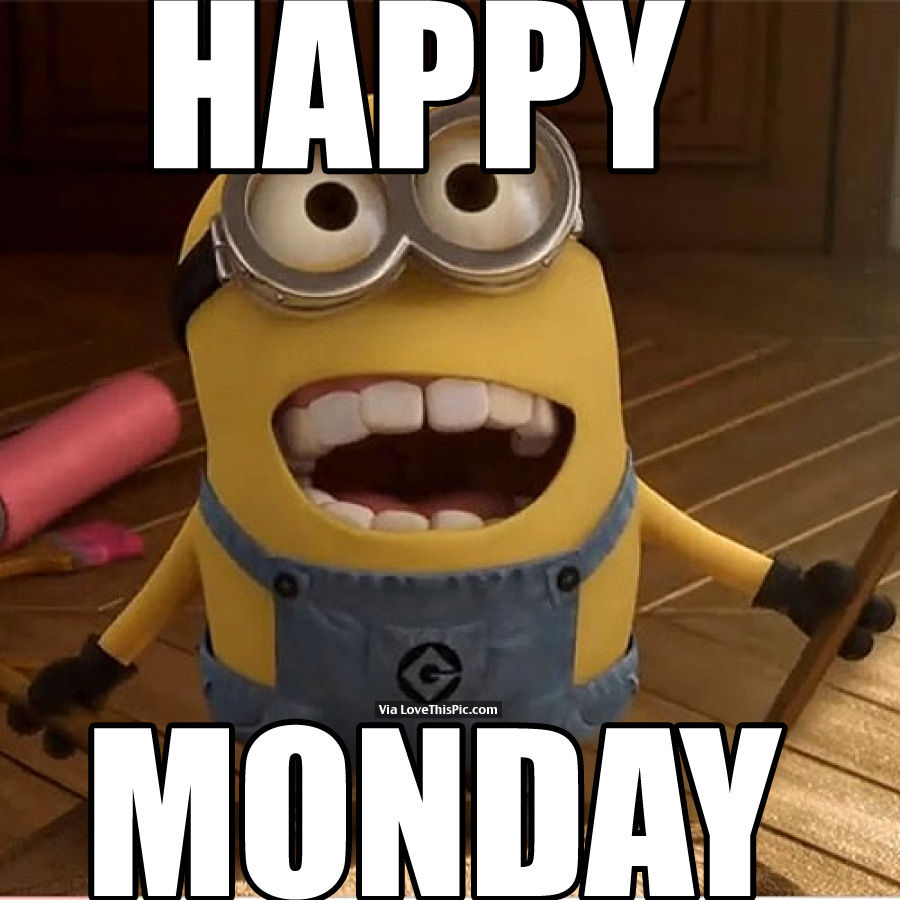 Image result for Mondays are cool