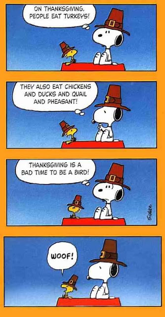 50732-Snoopy-And-Woodstock-Thanksgiving.