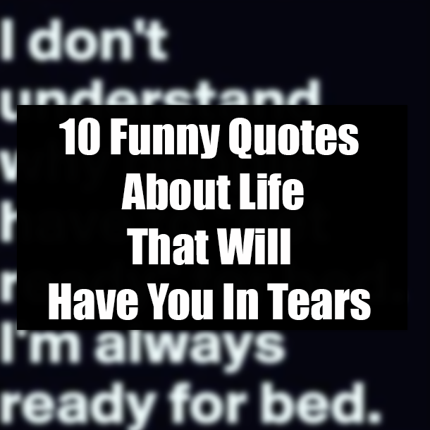10 Funny Quotes About Life That Will Have You In Tears