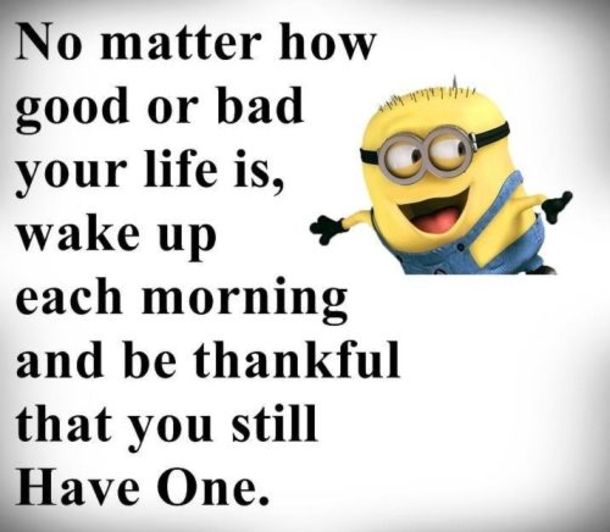 50 Best Funny Minion Quotes