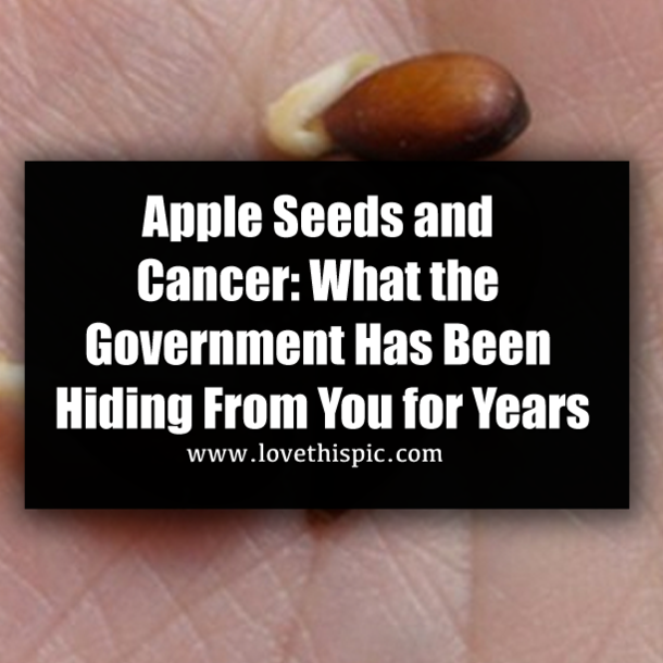 Apple Seeds and Cancer: What the Government Has Been Hiding
