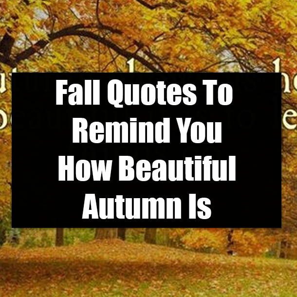 Fall Quotes To Remind You How Beautiful Autumn Is