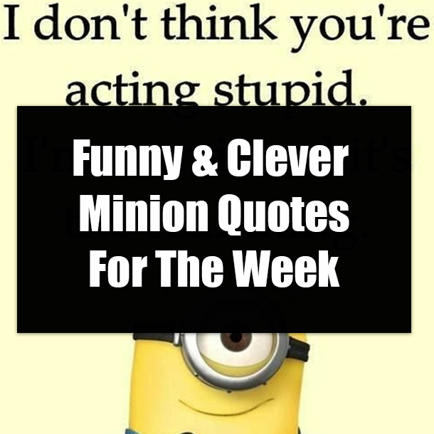 Funny Clever Minion Quotes For The Week