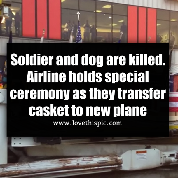 Soldier and dog are killed  Airline holds special ceremony